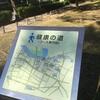 豊橋公園コーススタート地点