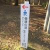 豊橋公園コース③