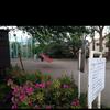 神田川沿いの公園