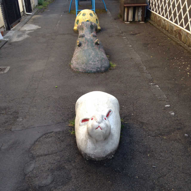 ウサギを追い掛けるカ