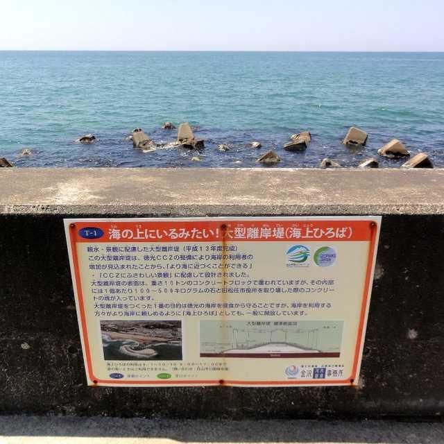 砂浜を浸食から守れ