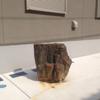 アパートの敷地の岩石