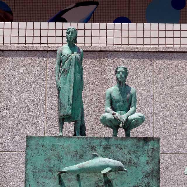 人とイルカの共存共栄