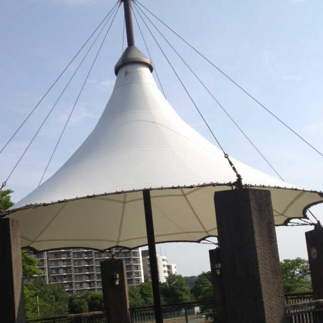 テント付きの観戦ポイント?