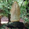 【九】鳩峰八幡神社の兜掛けの松