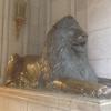 ライオン像(東京駅と同い年♪)