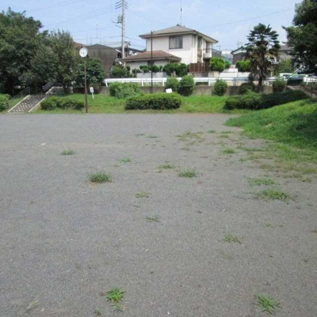 藤のある公園