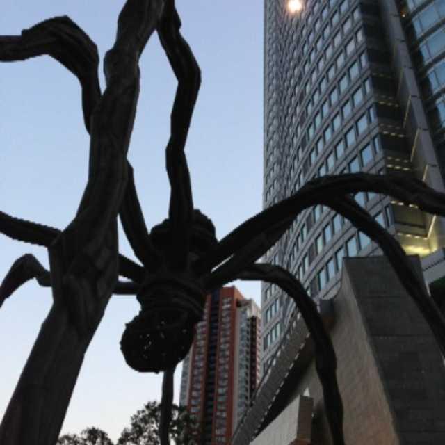 巨大な蜘蛛