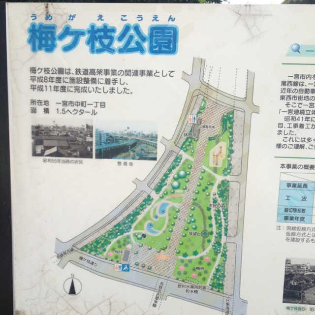 梅ヶ枝公園