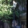 神社の境内に瓦斯灯♪