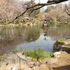 長崎諏訪神社が1番!