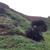 崖の上の城