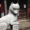 共光稲荷神社のお狐様
