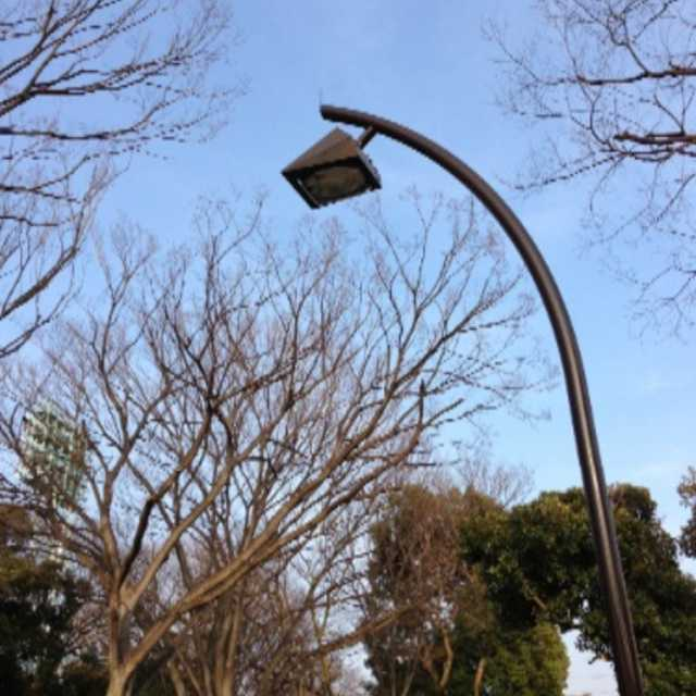 駒沢公園の街灯