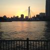 中央大橋を眺められる