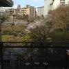 目黒の八芳園