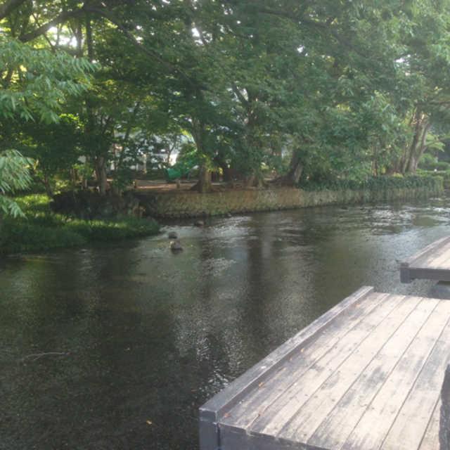 白滝公園(桜川)