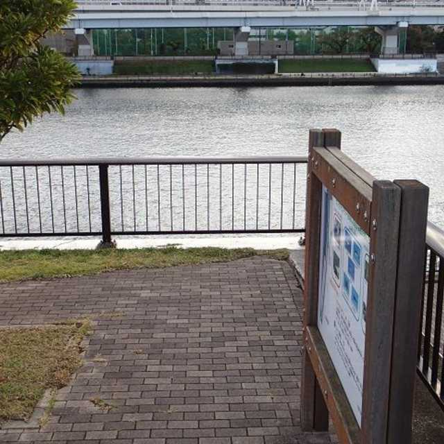 隅田川の聖域!