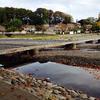 飯能河原の流れ橋