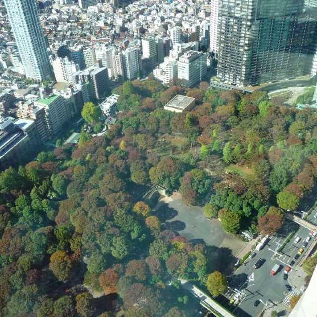 新宿中央公園の俯瞰