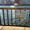 両国橋付近の隅田川沿