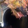 愛岐トンネル群6号トンネル