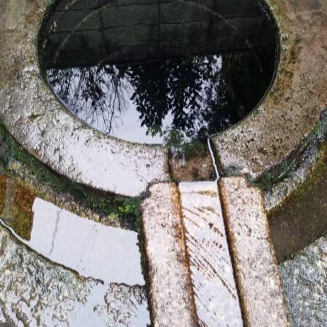 照井の井戸