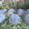 成子天神社の力石