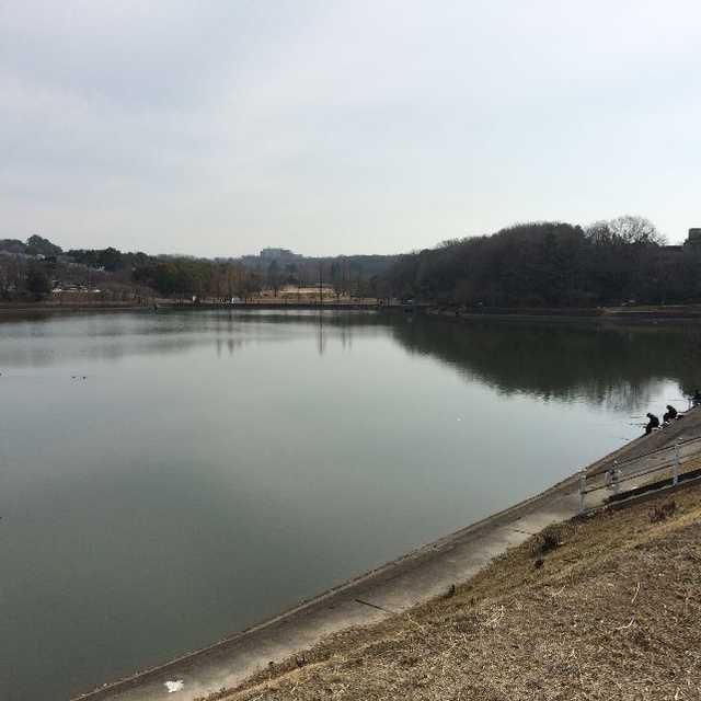 山崎川の水源です