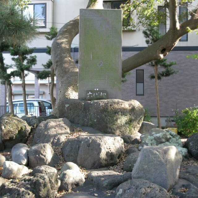六代松の碑