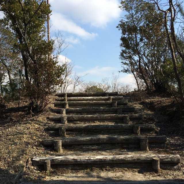 春の女神の丘への階段