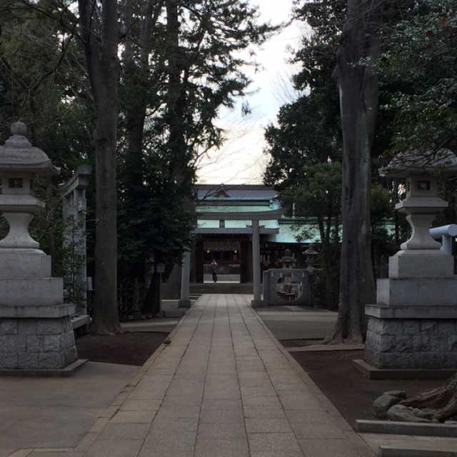 荻窪八幡神社の狛猫?