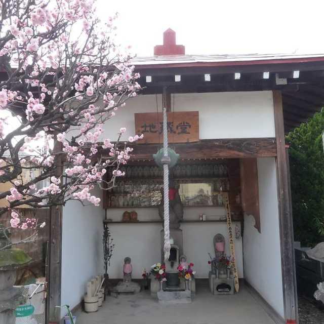 50 長性寺