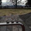 佐野城跡公園のピコリ