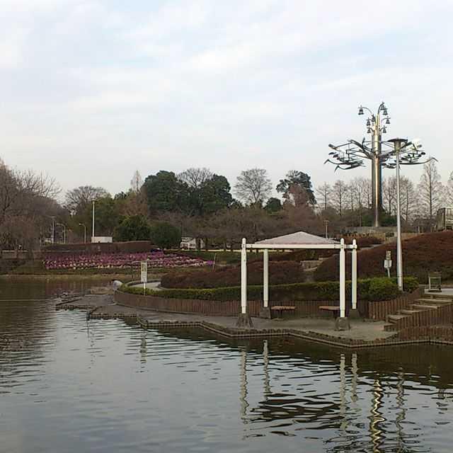 見沼代用水: さぎ山記念公園