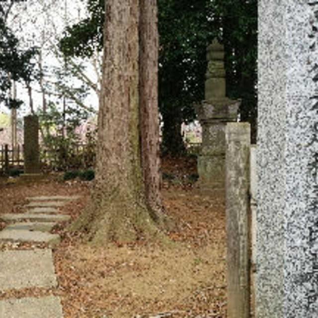 古河公方義氏の墓所
