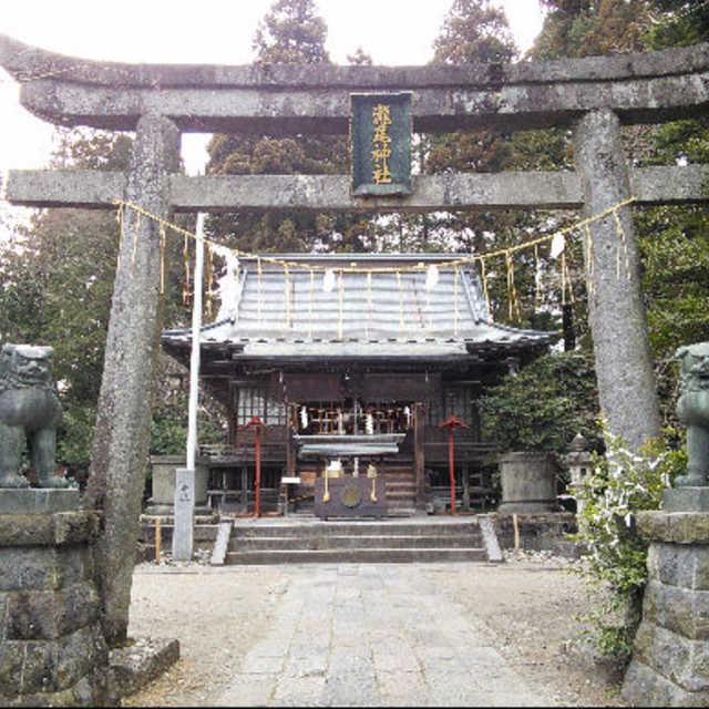 瀧尾神社の鳥居