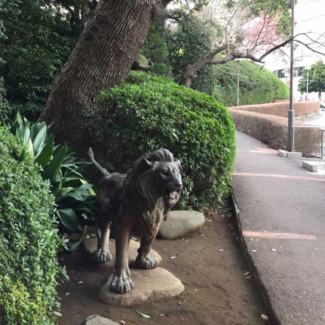 日本庭園のライオン♪