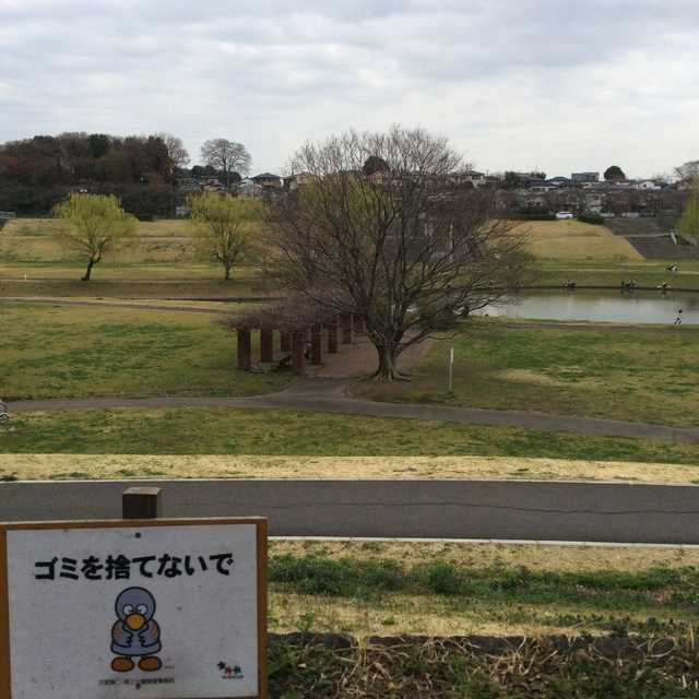 芝川と緑に包まれたひょうたん池