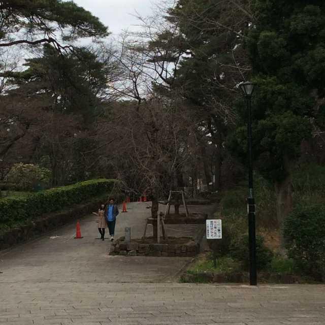 憩いの空間、大宮公園