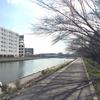 品川花海道