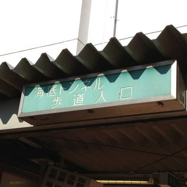東京湾の海底散歩