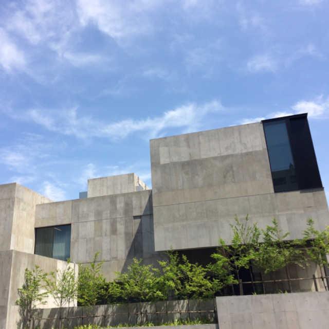 桐朋学園大学 音楽学部