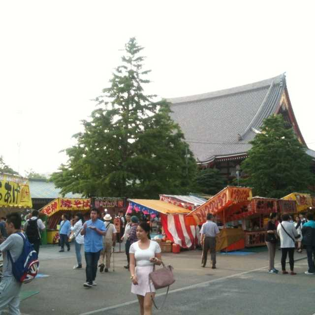 三社祭はじめました。