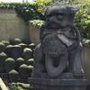 安養院 釈迦の涅槃像