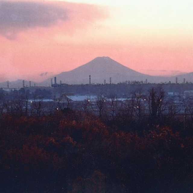 飛山からの富士