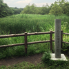 石神井城跡の碑