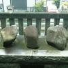 秋津神社で力比べ