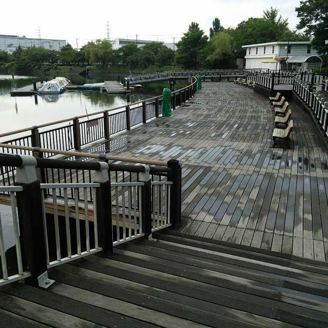久喜菖蒲公園の噴水