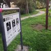 南谷端公園の健康遊具